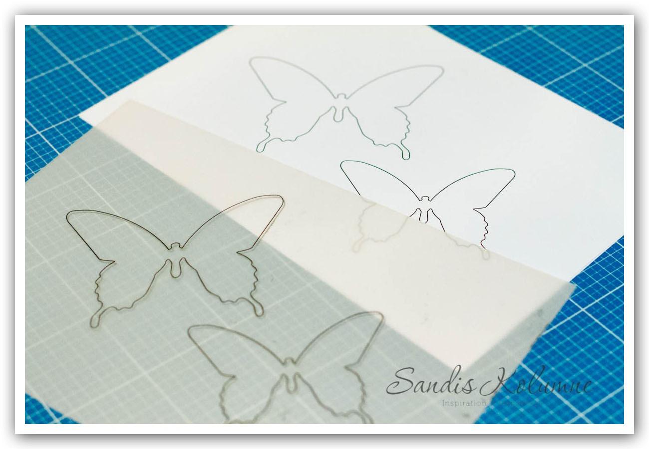 Ausdruck Schmetterlinge