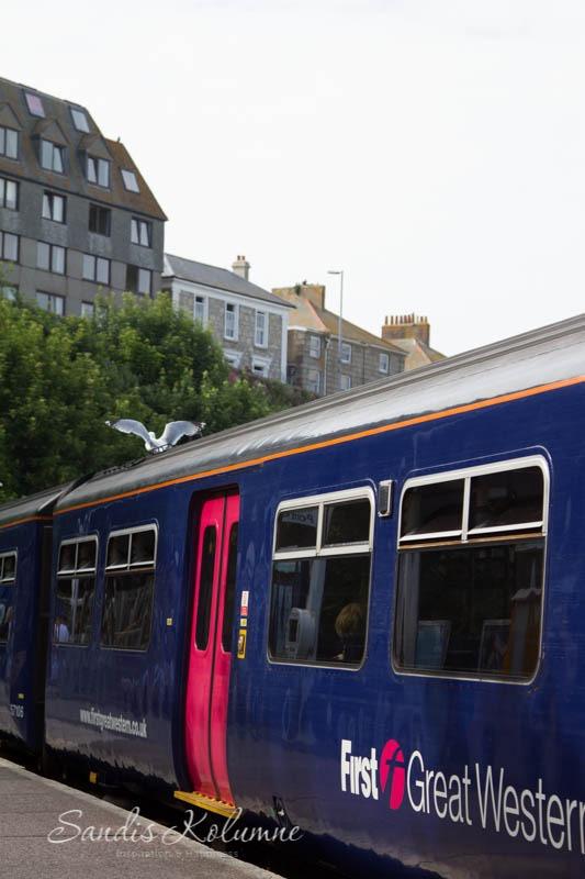 Möwe auf dem Zug