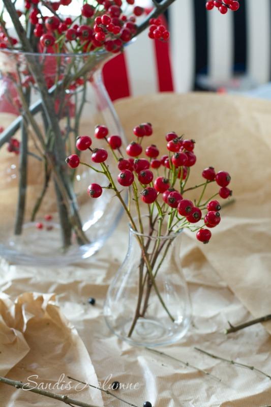 Hagebutten Friday Flowerday 11