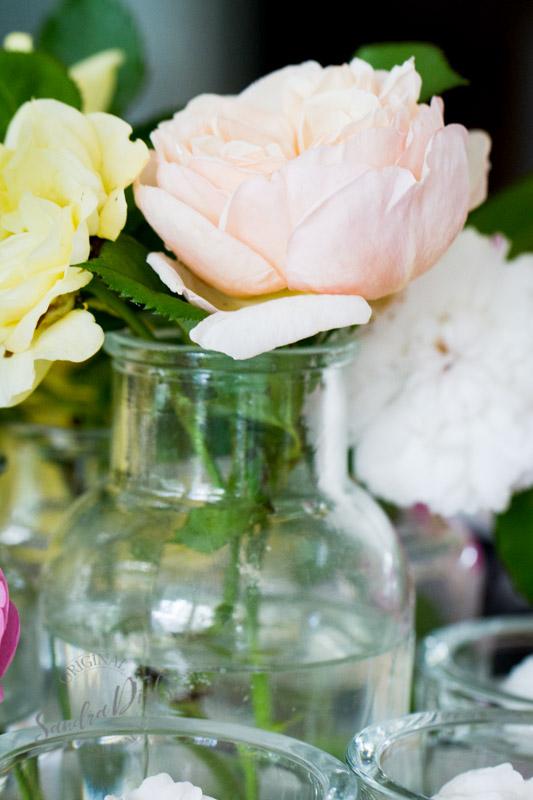 Friday Flowerday Rosenernte (12 von 36)