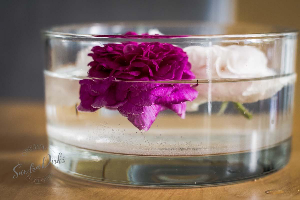 Friday Flowerday Rosenernte (22 von 36)