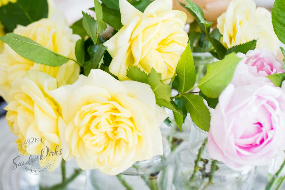 Friday Flowerday Rosenernte (8 von 36)