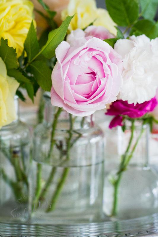 Friday Flowerday Rosenernte (9 von 36)