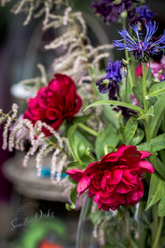 Friday Flowerday Schwiegermutterblumen Foto 1- Sandra Dirks