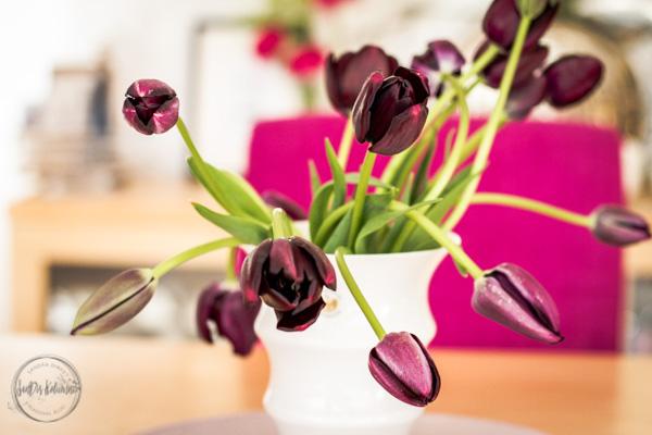 Sandra Dirks - Friday Flowerday letzte Tulpenernte in 2017 Wildwuchs