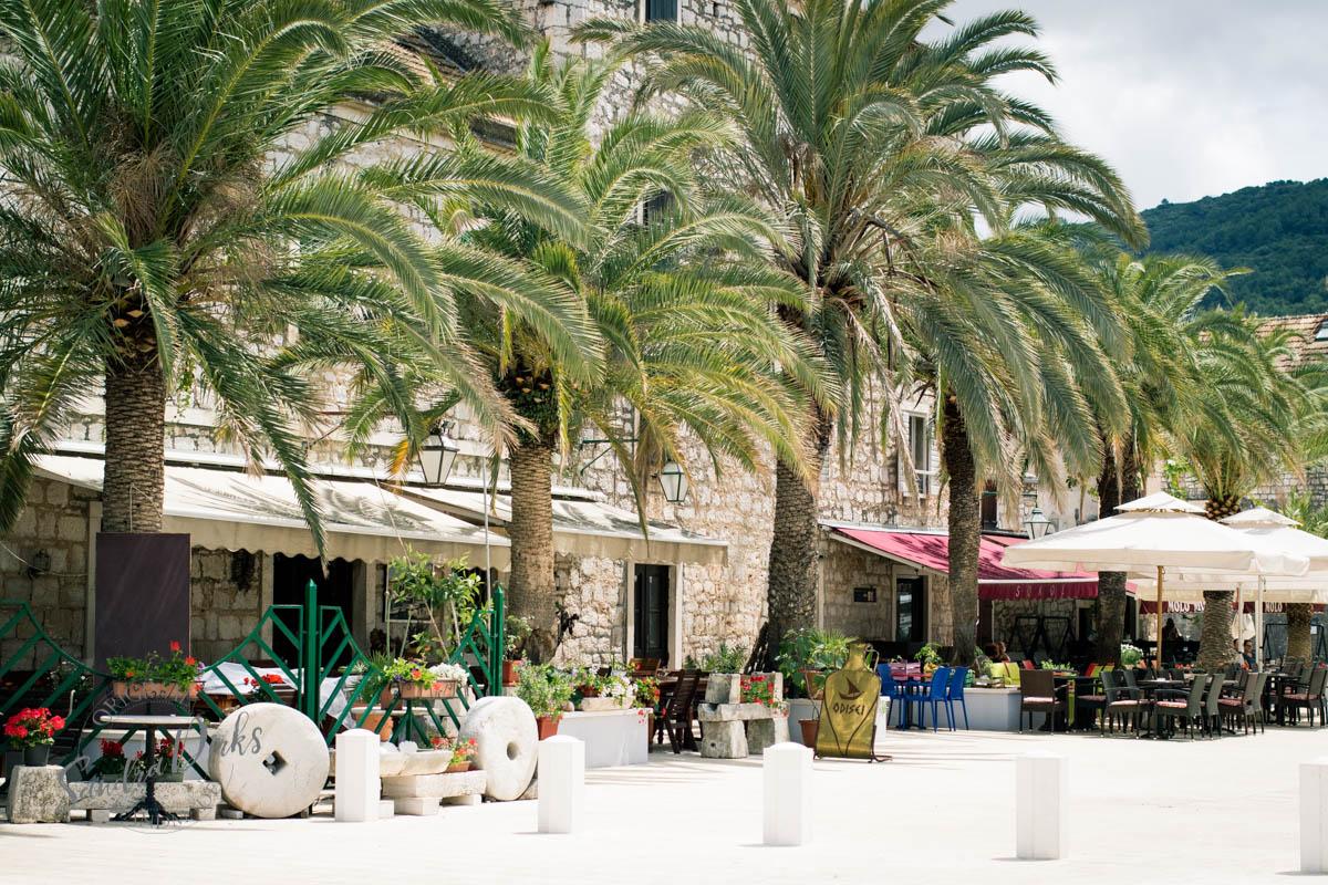 Sandra Dirks - Stari Grad Hvar Platz am Hafen mit Palmen