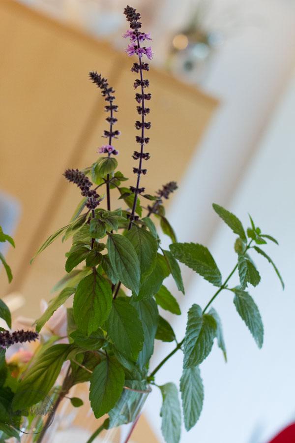 Sandra Dirks - FlowerFriday Rose und roter Basilikum
