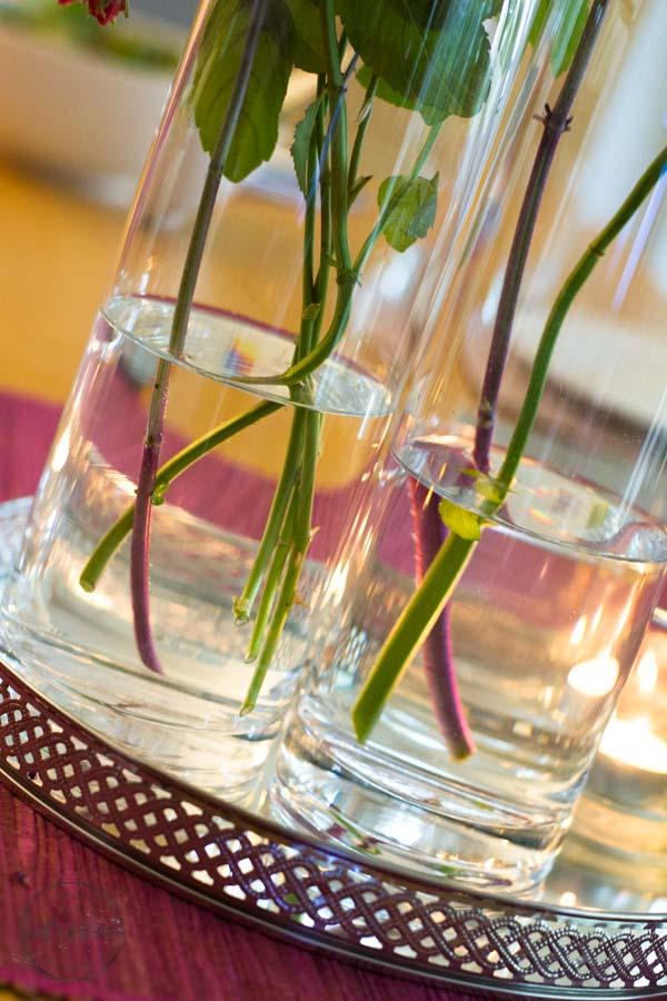 Sandra Dirks - FlowerFriday Stiele in grün und violett